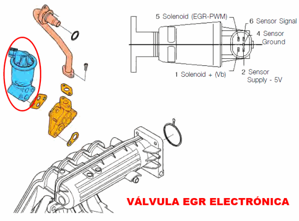 Valvula egr electronica