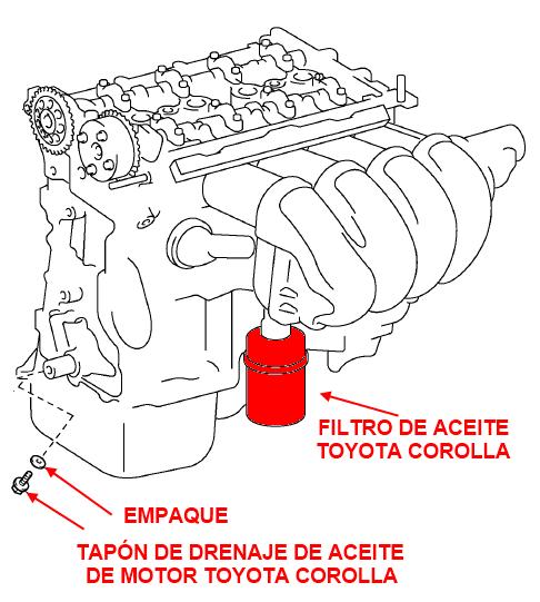 Worksheet. Filtro de aceite del Toyota Corolla y cambio de aceite 1990 1991